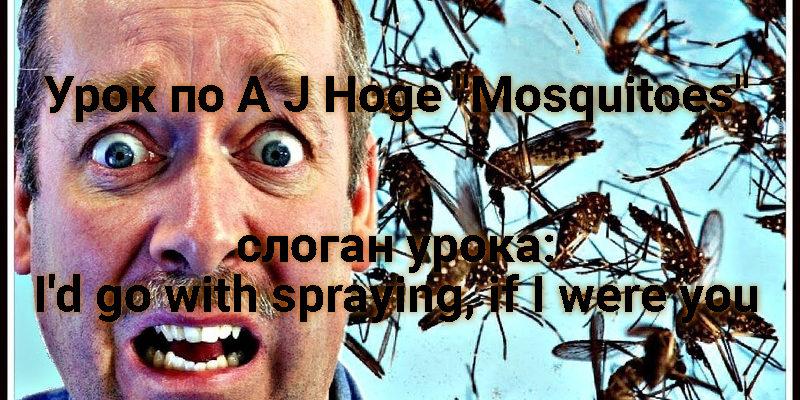 Аудирование Mosquitoes